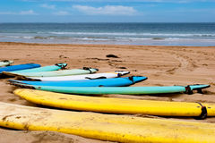 Surf boards on a beach. Colorful surf boards on a beach Royalty Free Stock Photo