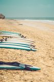Surf boards on the beach Royalty Free Stock Photo