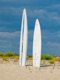 Surf boards in a beach. Stock Photos