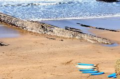 Surf Boards on the Cornish Coast Royalty Free Stock Photos