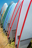 Surf Boards Royalty Free Stock Photography