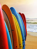 Surf Boards Stock Photo