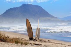 Surf boards  sand beach Stock Photography
