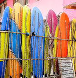 Surf boards standing against stick fence Royalty Free Stock Image