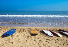 Surf Boards on Tropical Sand Beach Royalty Free Stock Photos