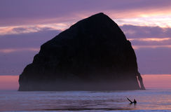 Surf at Cape Kiwanda. Lonely surfer at dusk time in ocean at Oregon Cape Kiwanda royalty free stock image