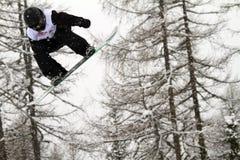 Surf des neiges Images stock