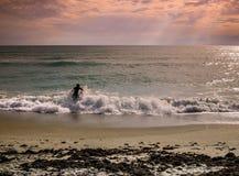 Surf Fishing Novice royalty free stock photo