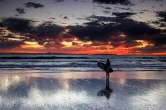 Surf girl at sunset. Young female with a surfboard watching a colorful sunset Royalty Free Stock Photography