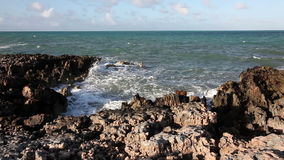 Surf on the island of Cayo Guillermo. Atlantic ocean. Cuba stock video