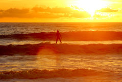 Surf like god - Standing on water sunset. A sufer standing over the water in a beatifull sunset Royalty Free Stock Photography