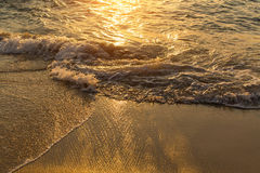 Surf line in a golden glow of the setting sun. Nature. Stock Photos