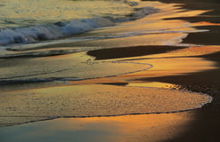 Surf line at sunset Royalty Free Stock Images