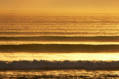 Surf line up. Lines of waves at sunset Royalty Free Stock Photography