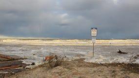 surf Onda forte nos Anos Novos fotografia de stock