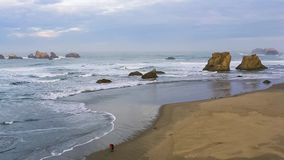 Surf on the Pacific Coast