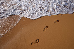surf plażowa Obraz Stock