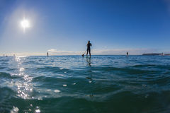 Surf Riders SUP Standing Waiting Waves Blue. Surf riders unidentified male female with paddle blade in hand standing balancing on sup surfboards waiting for Royalty Free Stock Image