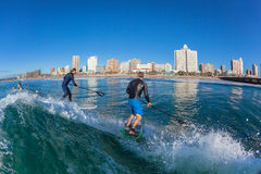 Surf Riders Two SUP Surfing Wave Royalty Free Stock Photography