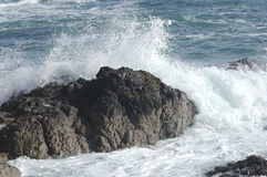 Surf on rocks. Sea surf breaking over rocks Royalty Free Stock Images
