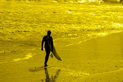 Surf's up Royalty Free Stock Photography