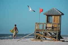 Surf's Up. A surfer, a seagull, and a watch tower by the beach Stock Images