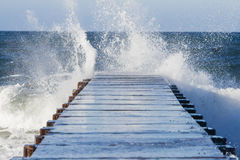 Surf's Up! Royalty Free Stock Image