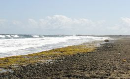 Surf and Shore Against a Bright Sky and Cloud Bank Royalty Free Stock Images