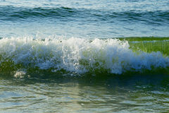 Surf on the shore of the Black Sea in the summer Stock Image