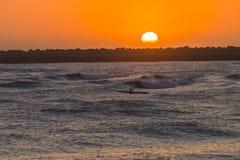 Surf-ski Paddler Ocean Sunrise. Surf-ski paddler at sunrise training on ocean waves waters around shallow reefs Stock Photo