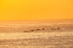 Surf-Ski Canoe Paddlers Four Ocean Training Sunris Stock Photography