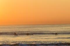 Surf-Ski Paddlers Riding Waves Royalty Free Stock Photography