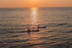 Surf-Ski Paddlers Ocean Morning Stock Images
