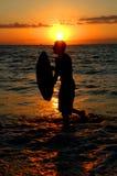 Surf sunset royalty free stock photos