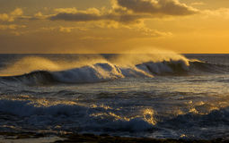 Surf, Sunset, Kauai, Hawaii Royalty Free Stock Photography