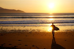 Surfer on Brandon Bay at sunset. Surfer going in water at sunstet Royalty Free Stock Photo