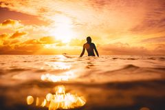 Surf woman in ocean waiting wave at sunset or sunrise. Winter surfing in ocean. Surf woman in ocean waiting wave at sunset or sunrise. Winter surfing Stock Image