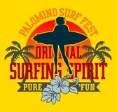 surfa Royaltyfria Bilder