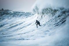 surfa arkivbilder