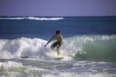 surfa för hawaii man royaltyfria foton