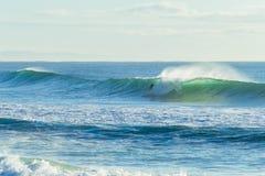 Surfa för surfarevågritt Royaltyfri Foto