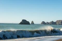 Surfa från Stilla havet som bryter på stranden på den ryska flodmunnen fotografering för bildbyråer