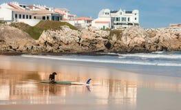 Surfa i Baleal arkivbild