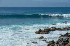 Surfa i den Honolua fjärden Arkivfoton