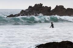 Surfa i Kalifornien Arkivfoton