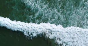 Surfa i Marocko flyg- sikt copter stock video