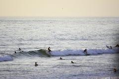 Surfa på den Stillahavs- stranden i San Diego, CA Arkivbild