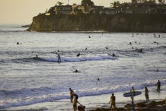 Surfa på den Stillahavs- stranden i San Diego, CA Arkivfoto