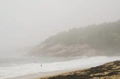 Surfa på stranden för Acadianationalparksand Arkivbild