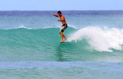surfa waikiki för atillahawaii jobbagyi Fotografering för Bildbyråer